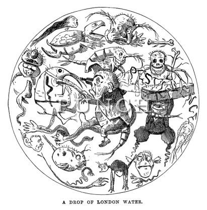 John-Leech-Cartoons-Punch-1850-05-11-188