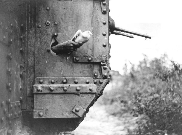 Messenger_pigeon_released_from_British_tank_1918_IWM_Q_9247